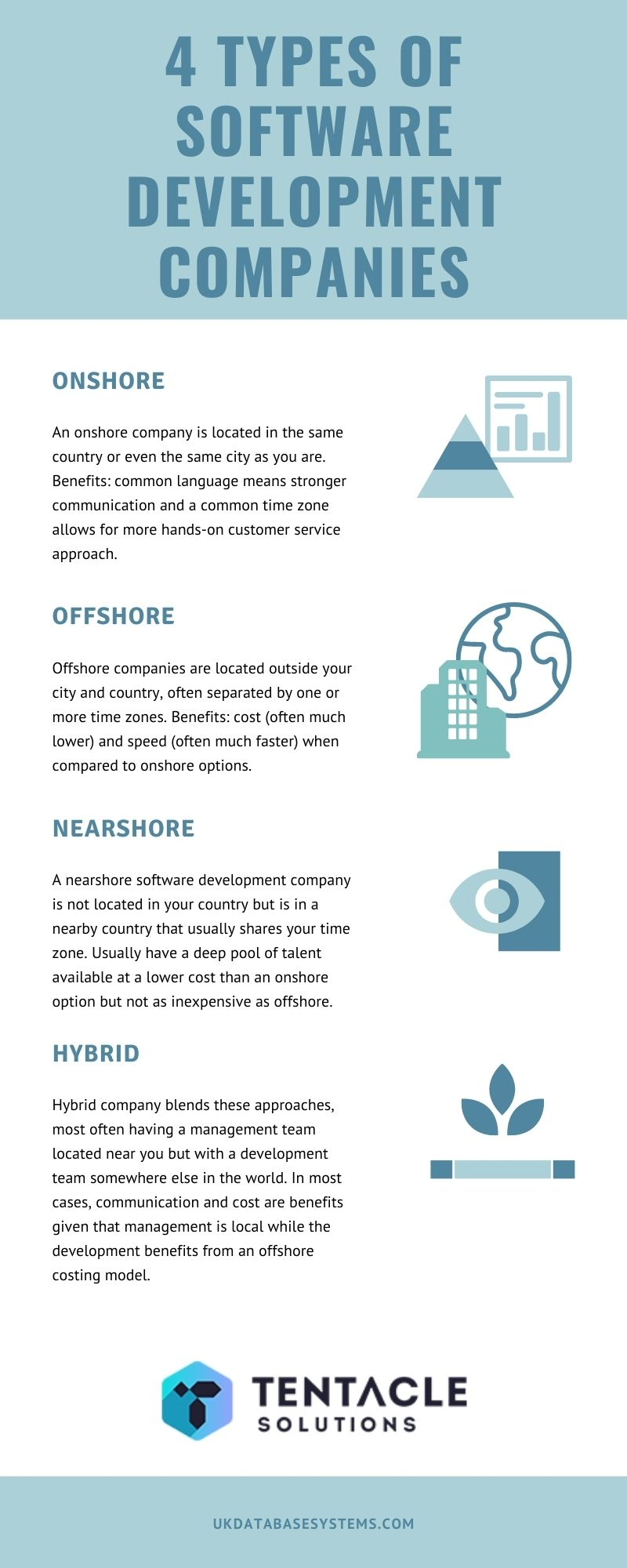 types of custom software companies infographic by tentacle solutions